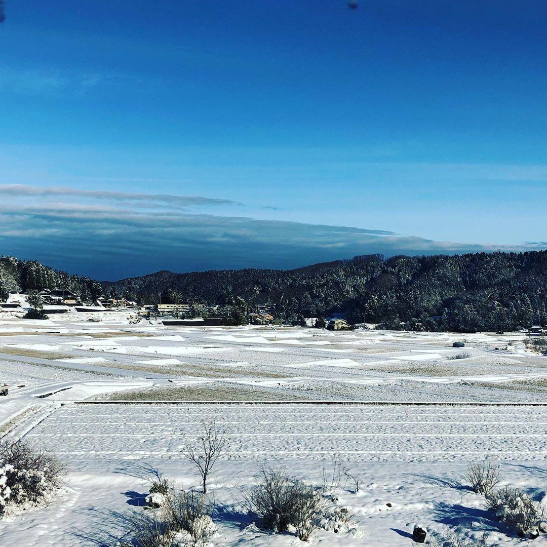 デリケートトゥールの冬景色